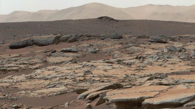 Bazı Mikroorganizmaların Mars'ta Geçici Olarak Hayatta Kalabileceği Keşfedildi