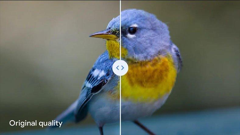 """Google Drive'ın """"Yüksek Kalite Modu"""" Fotoğraflara Geri Dönüşü Olmayan Etkiler Bırakıyor"""