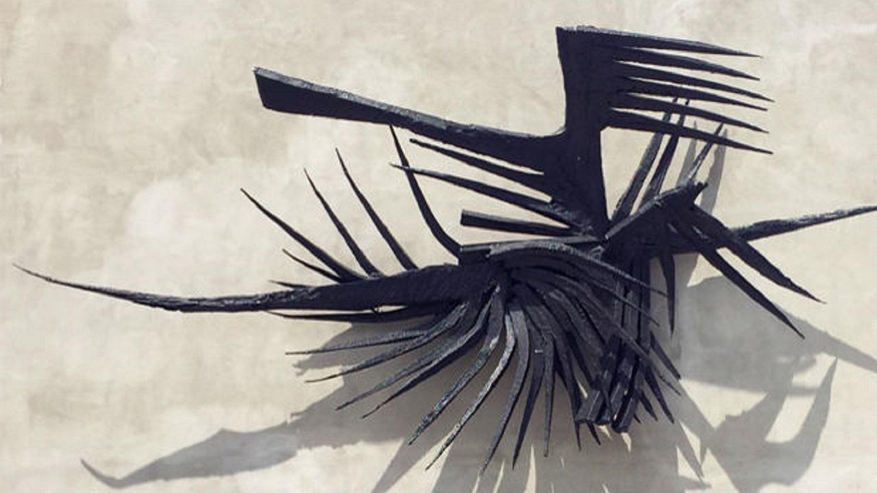Kuzgun Acar Kuşlar