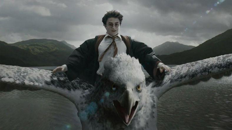 Harry Potter Filmlerinde Es Geçilen Talihsiz Yaratık 'Şahgaga' Kitaplarda Nasıl Anlatıldı?