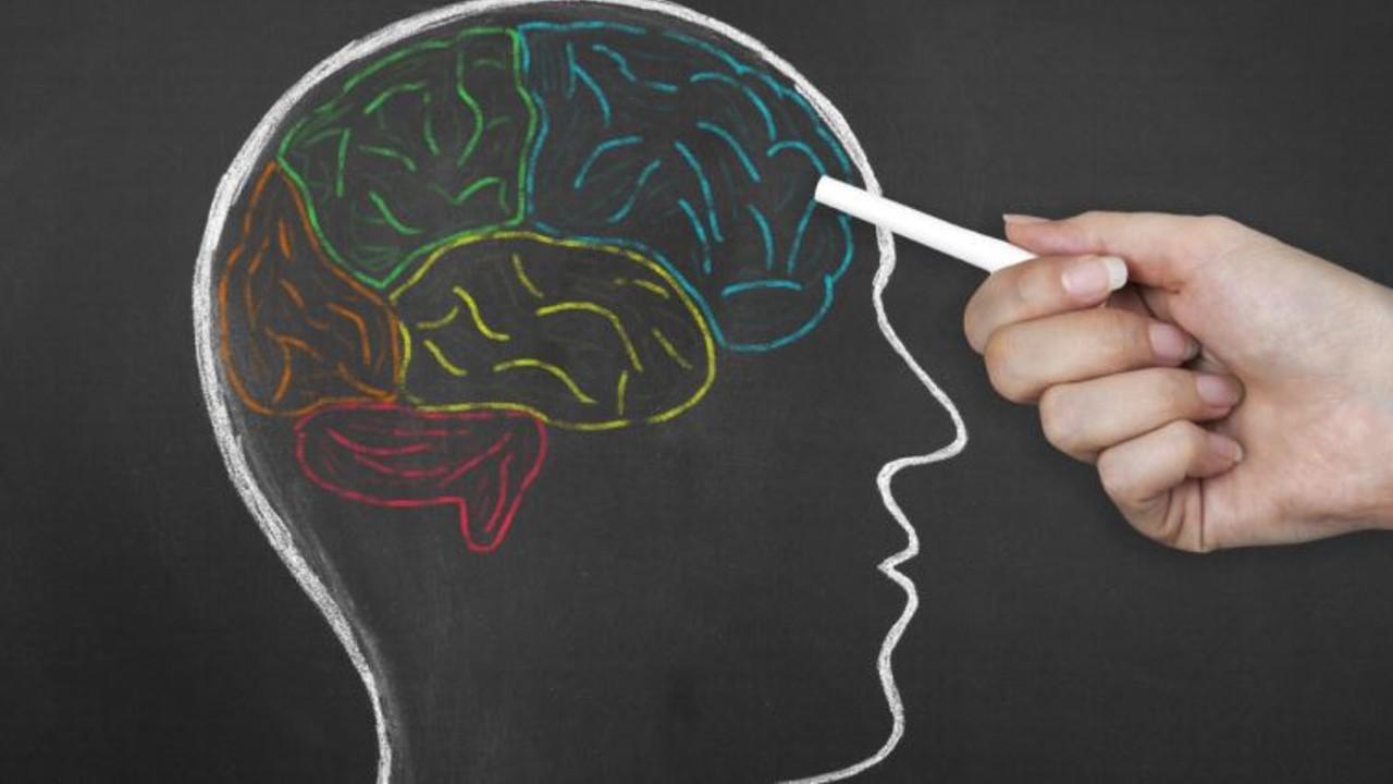 prefrontal lob
