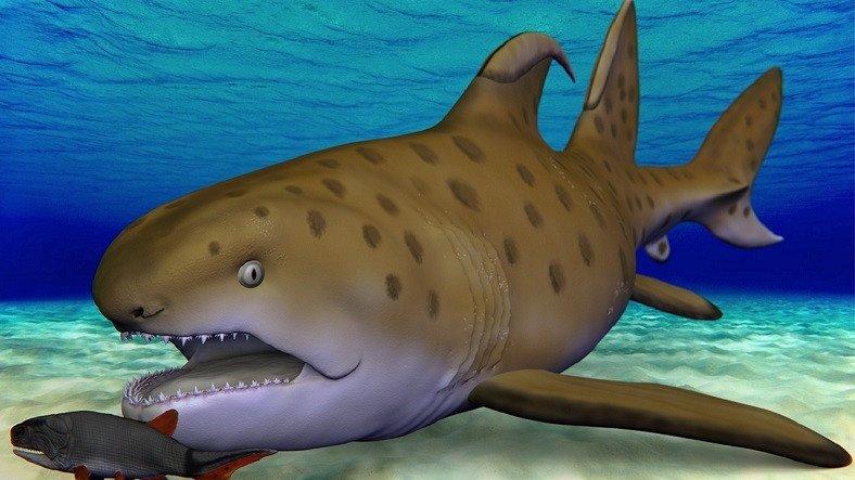 300 Milyon Yıl Önce Yaşayan Köpek Balığı Godzilla Shark, Yeni Bir Tür Olarak Yeniden İsimlendirildi
