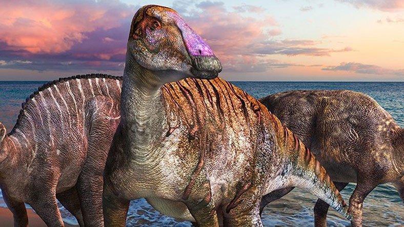 İki Ayaklıdan Dört Ayaklıya Evrime İşaret Eden Yeni Bir Dinozor Türü Keşfedildi