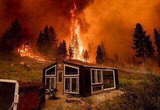 Dünya'nın Ateşi Çıktı! Türkiye Gibi Şu Sıralar Orman Yangınlarıyla Mücadele Eden Ülkeler Hangileri?