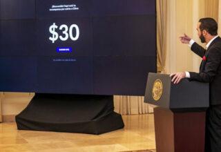 Dünya Çapında '30 Dolarlık Bitcoin Alın' Çağrısı Başlatıldı: İşte Sonuçları